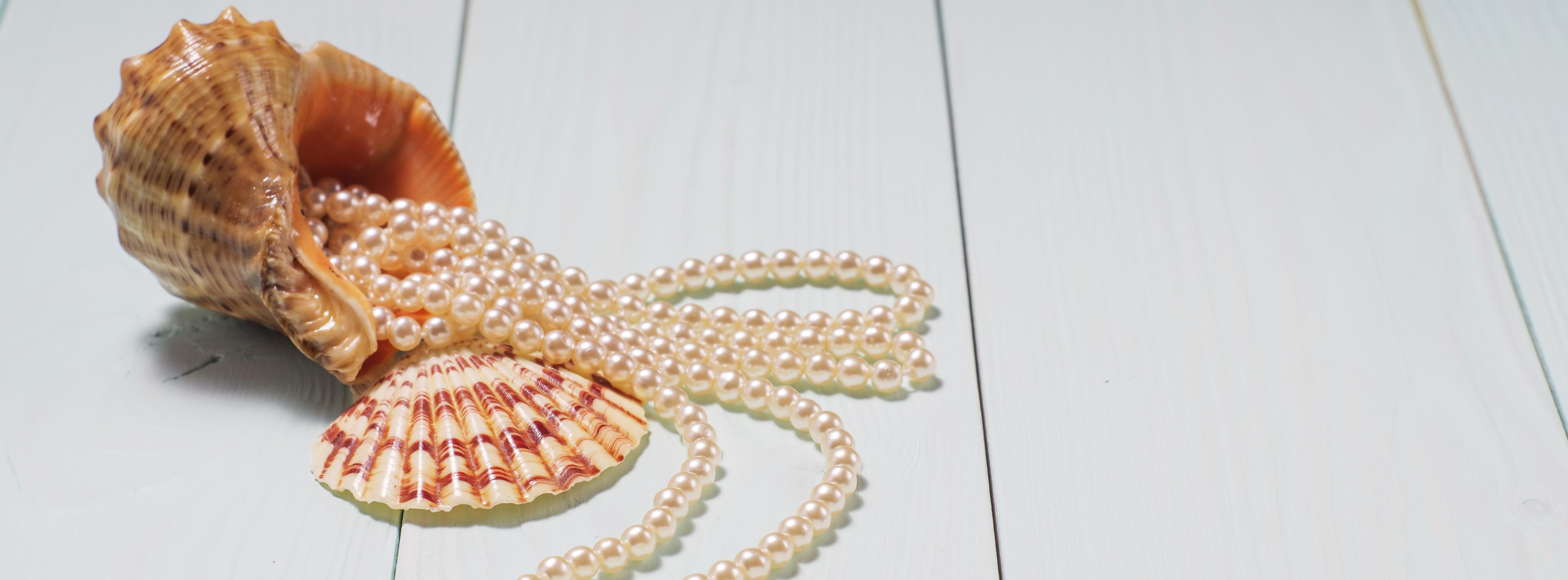 Geschenk aus Seecockleshells und Perlen